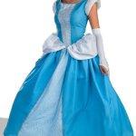 cinderella costume ideas adults