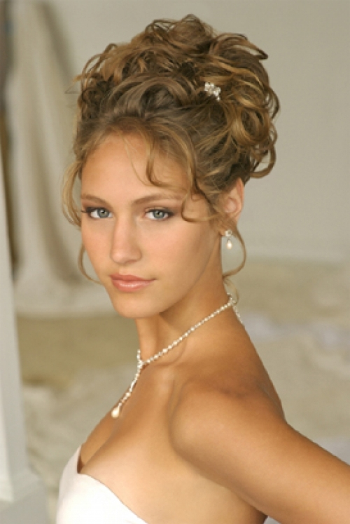 Wedding updos for long hair with vei wedding updos for long hair 2013 solutioingenieria Images